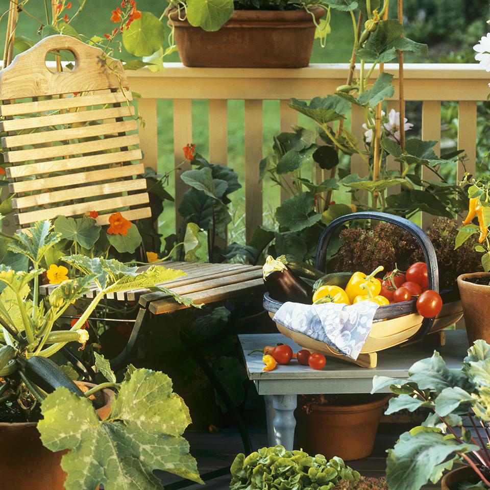 Un potager sur le balcon les conseils de westwing magazine - Que planter sur son balcon ...