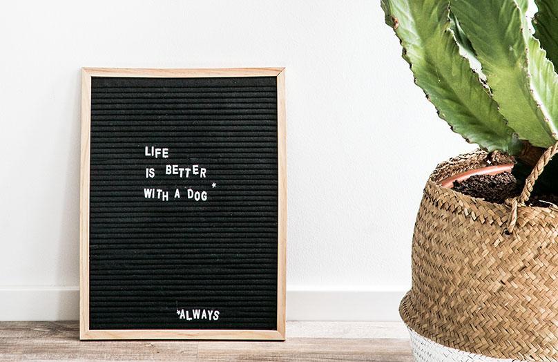 DIY : un tableau à lettres
