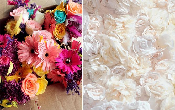 fiori bianchi e colorati
