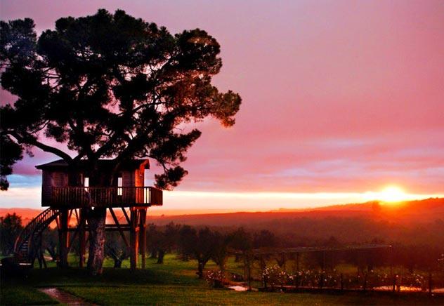 Risultati immagini per case sull'albero al tramonto