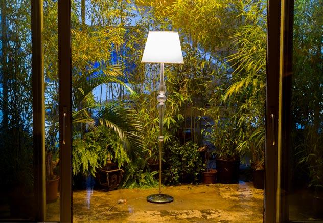 lampada foresta