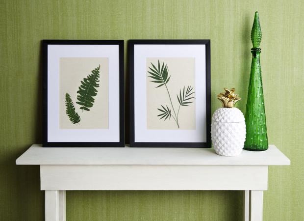 quadri piante