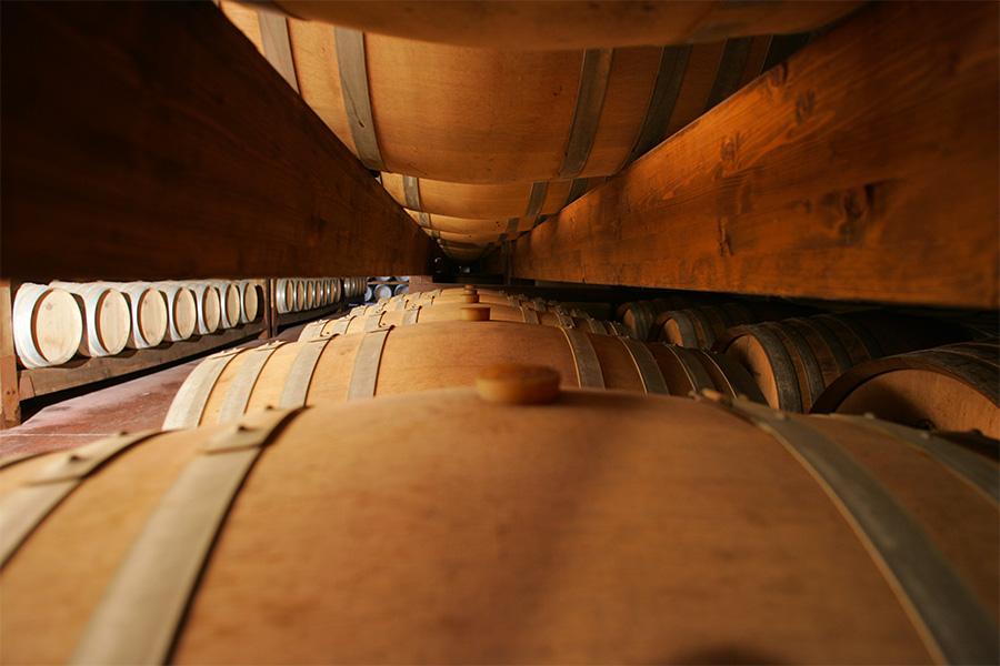 Vino, Sardegna, Made-in-Italy, Fashion