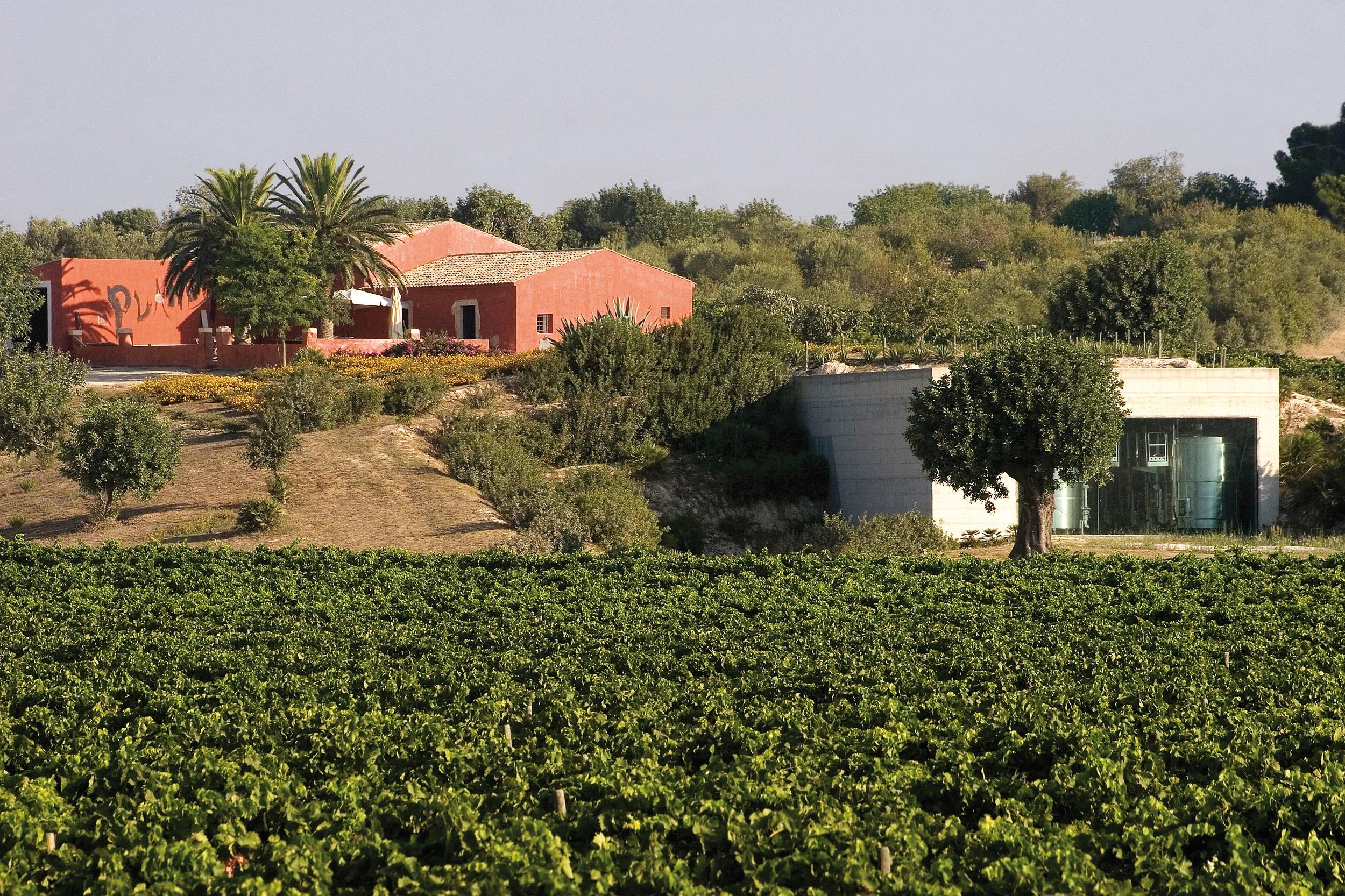 Situata nei pressi delle città tardo-barocche di Noto e Modica, oggi siti Unesco, ed a pochi chilometri dal borgo marinaro di Marzamemi, la tenuta Buonivini prende il nome, ancora oggi in uso, dall'antica contrada nella quale è ubicata.