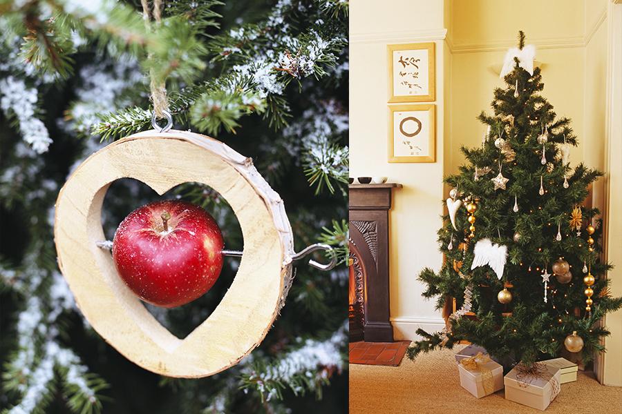Feste, Dalani, Colori, Ispirazioni, fai-da-te, Idee, Natale
