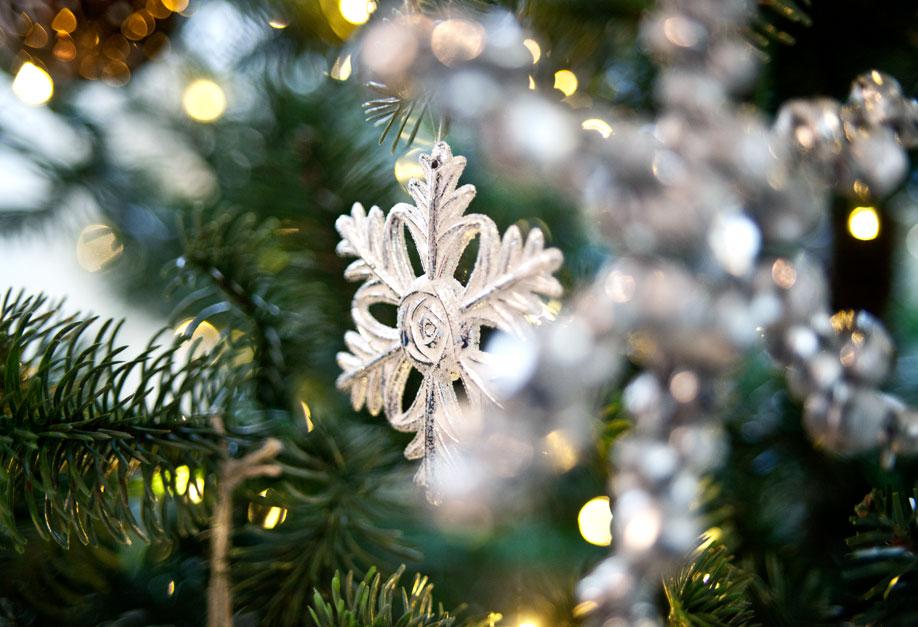 Delia-Fischer, Casa, Natale, Decorazioni, Dalani, Trend, Colori