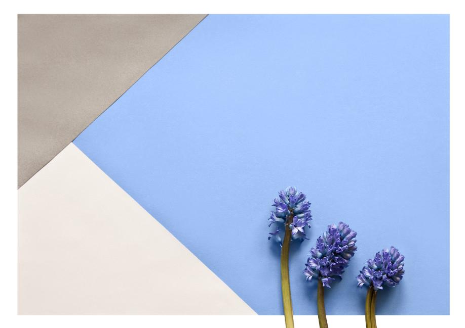I-colori-dell-anno, Colori, Trend, Casa, Moda, Arredamento