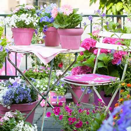 Garden Design - Progettare un angolo verde preview