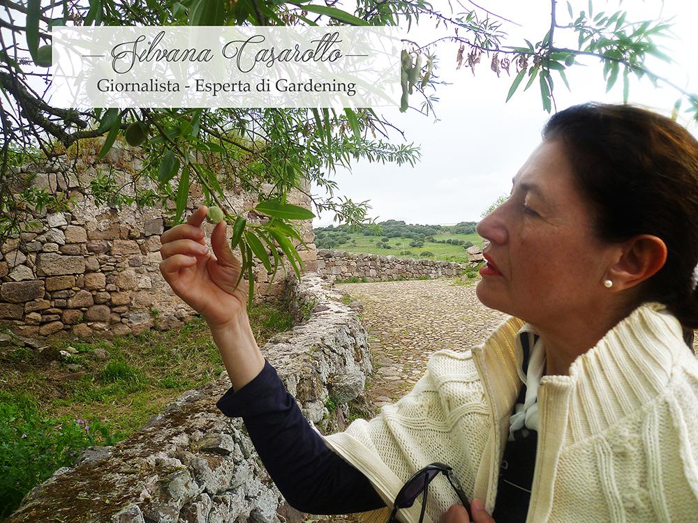 Garden-design, Design, Garden, Fiori, Silvana-casarotto