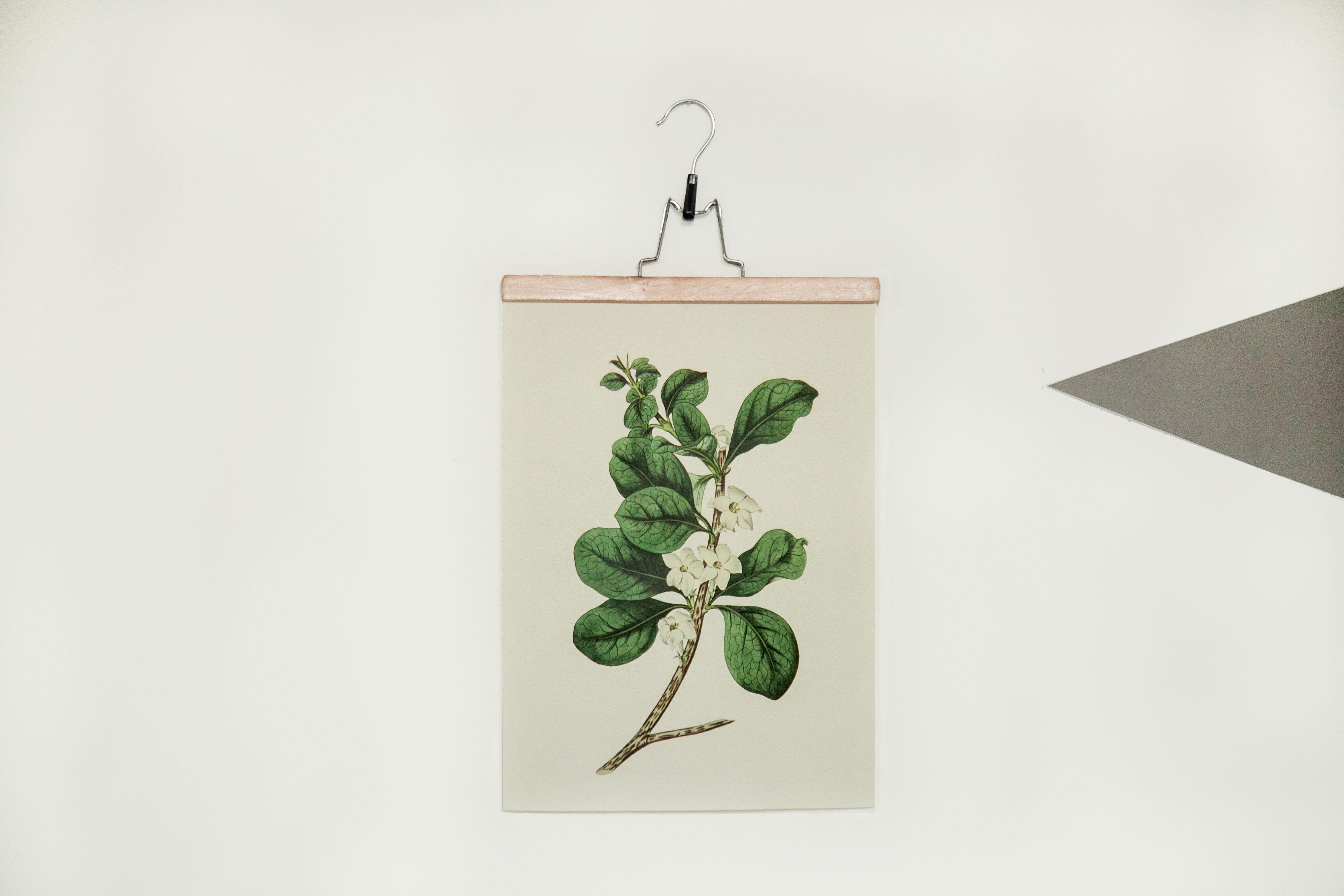 5 Idee Per Appendere Un Poster Senza Cornice Dalani