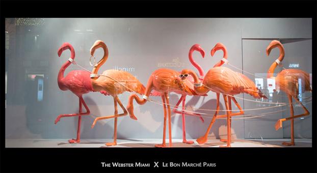 Flamingo-etalages