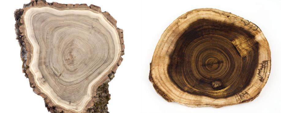 De mooiste soorten hout
