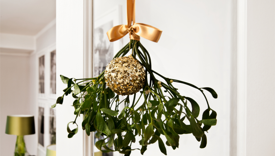 Westwing-LastMinute-deco-mistletoe