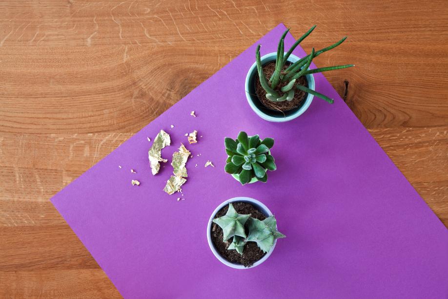 westwing-diy-bladgoud-plantenpotten6