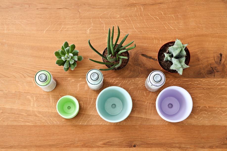 westwing-diy-bladgoud-plantenpotten4