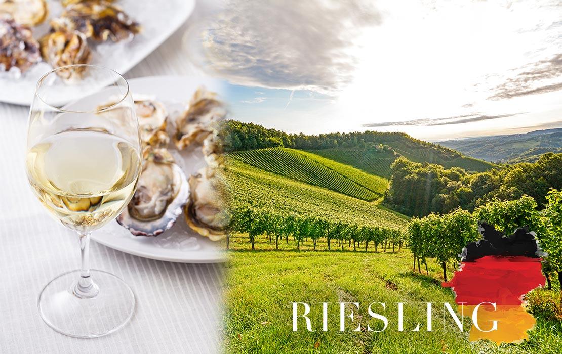 beelden_wijngids2