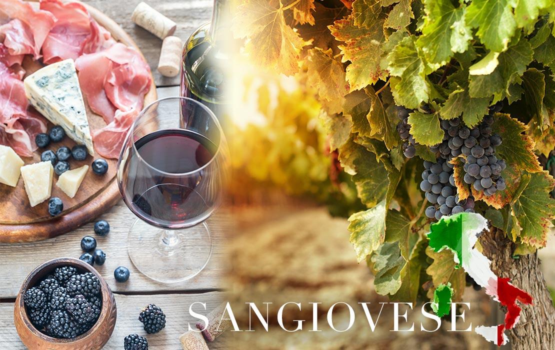 beelden_wijngids4
