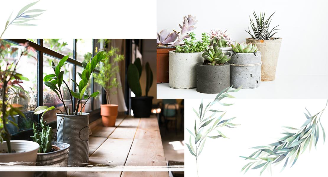 04_mayra_botanische_tuin