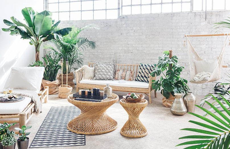 Bamboe: hét trendmateriaal van nu