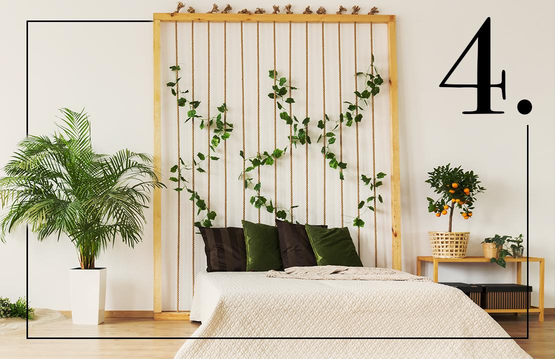 5 x planten voor een betere nachtrust | Westwing Magazine
