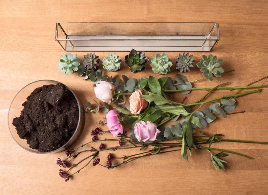 terrarium ozdobne z sukulentami