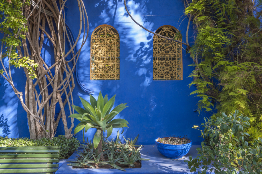 westwing-ogrody-majorelle-2